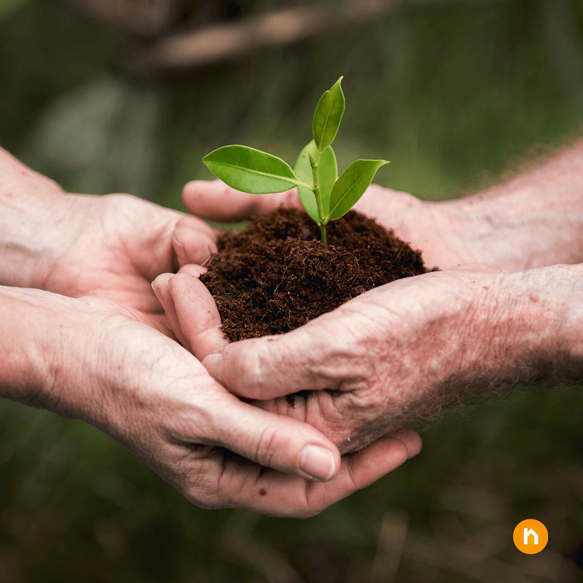 Nachhaltiges und sozial verantwortliches Investieren – ein Megatrend